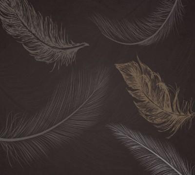 Фотошторы «Эскизные перья на шоколадном фоне»