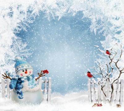 Фотошторы «Зимний день»