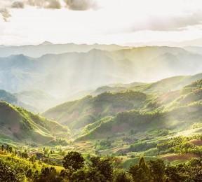 Фотошторы «Зеленая долина»