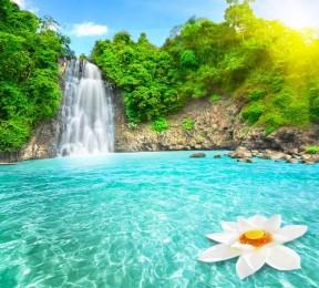 Фотошторы «Водопад с кувшинкой»