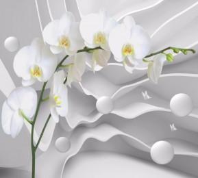 Фотошторы «Белая орхидея на объемном фоне»