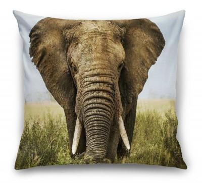 3D Подушка «Слон»