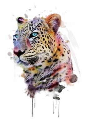 3D Фотообои «Красочный леопард»