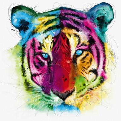 3D Фотообои «Красочный тигр»