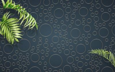 3D Фотообои  «Круги в тропиках»