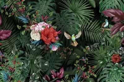 Фотообои «Райские птицы»