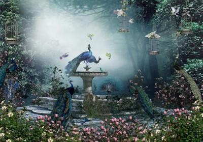 3D Фотообои «Фонтан с павлинами»