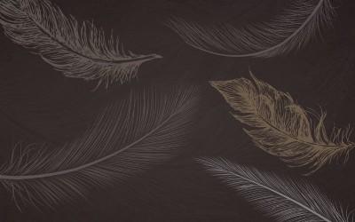 3D Фотообои «Эскизные перья на шоколадном фоне»
