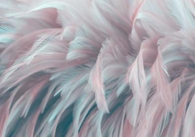 3D Фотообои «Невесомое блаженство»