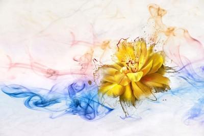 3D Фотообои «Яркий цветок в красочных потоках»