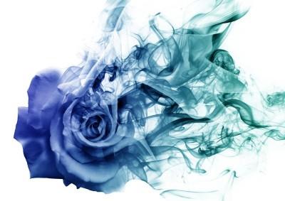 3D Фотообои «Роза в небесной дымке»