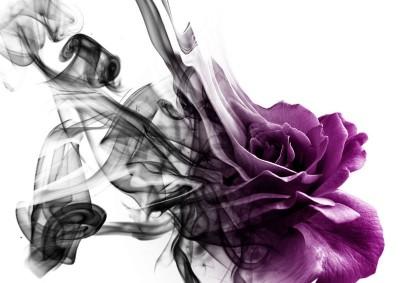 3D Фотообои «Лиловая фантазия»