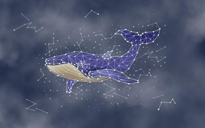 3D Фотообои «Звездный кит»