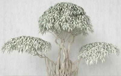 3D Фотообои «Зеленый бонсай»