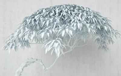 3D Фотообои «Чудесное дерево»