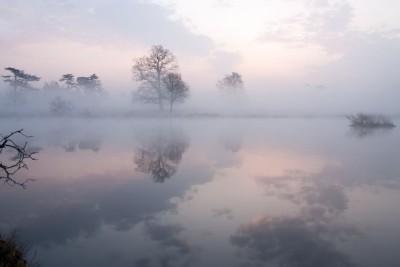 3D Фотообои «Туманная дымка над озером»