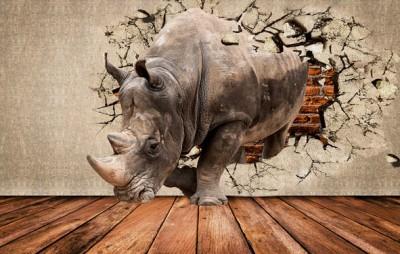 3D Фотообои «Носорог сквозь стену»