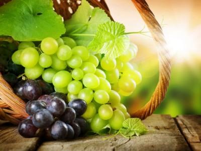 3D Фотообои  «Грозди винограда»