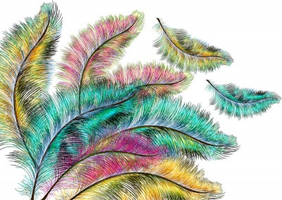 3D Фотообои «Радужные перья»