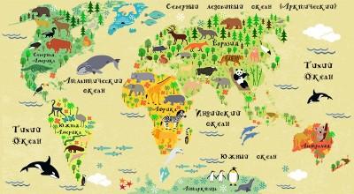 3D Фотообои «Карта мира для детской»
