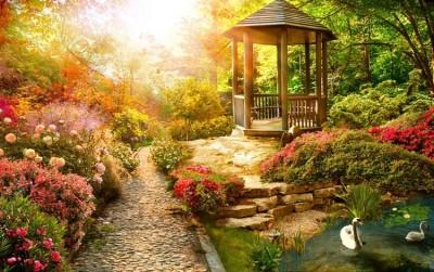 3D Фотообои «Весеннее утро в заповедном парке»