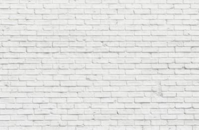 3D Фотообои  «Белый кирпич»