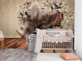 3D Фотообои «Носорог сквозь стену» вид 3