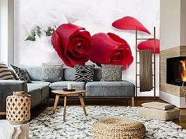 3D Фотообои  «Красные розы в перьях»  вид 7