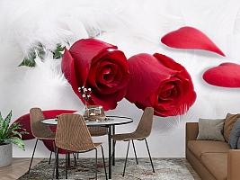 3D Фотообои  «Красные розы в перьях»  вид 3