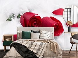 3D Фотообои  «Красные розы в перьях»