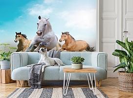 3D Фотообои «Лошади в дикой природе» вид 2