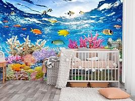 3D Фотообои «Яркие краски кораллового рифа» вид 3