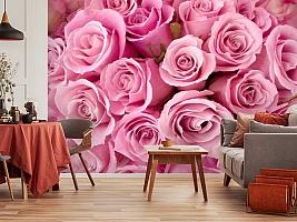 3D Фотообои «Розовые розы» вид 5
