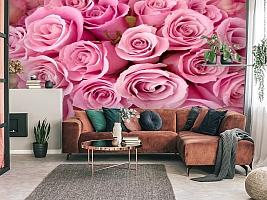 3D Фотообои «Розовые розы» вид 3