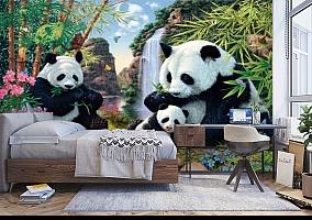 3D Фотообои «Семейство панд» вид 5
