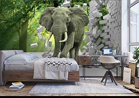 3D Фотообои «Слон на фоне леса» вид 5