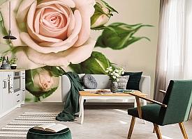 3D Фотообои «Роза» вид 7