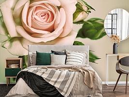 3D Фотообои «Роза» вид 4
