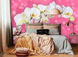 3D Фотообои «Белая орхидея на розовом фоне» вид 6