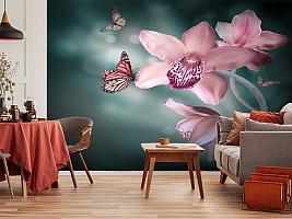 3D Фотообои «Изящная орхидея» вид 5