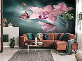 3D Фотообои «Изящная орхидея» вид 3