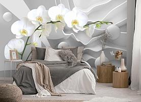 3D Фотообои «Белая орхидея на объемном фоне» вид 5