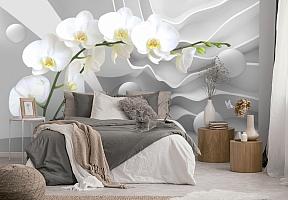 3D Фотообои «Белая орхидея на объемном фоне»