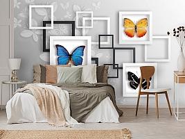 3D Фотообои «Коллекция бабочек» вид 3