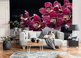3D Фотообои «Бордовые орхидеи» вид 8