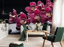 3D Фотообои «Бордовые орхидеи» вид 7