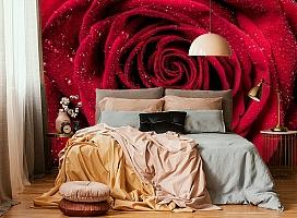 3D Фотообои «Большая роза в росе» вид 6