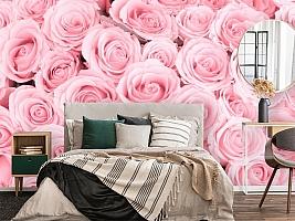 3D Фотообои «Ковер из нежно-розовых роз»
