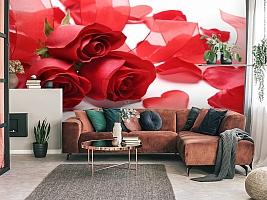 3D Фотообои «Композиция с алыми розами» вид 3