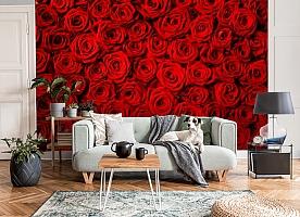 3D Фотообои «Миллион алых роз» вид 8